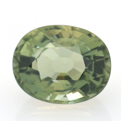 3.25 ct Green Apatite Oval Cut