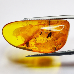 15.27ct Baltic Amber with...