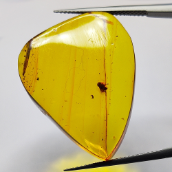 18.97ct Baltic Amber with...