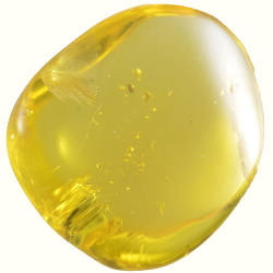 9.97ct Baltic Amber with...