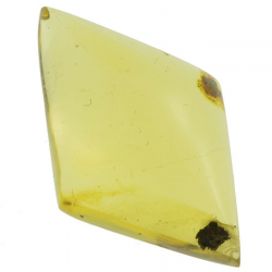 3.94ct Amber cabochon oval...