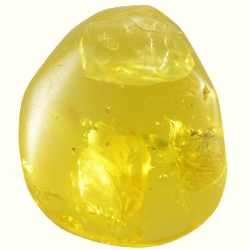 10.28ct Baltic amber with...