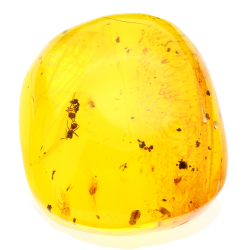 39.78ct Amber from...