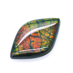 8,86ct Ammolite Double